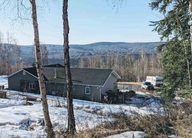 999 Chad Street, Fairbanks, AK 99709 (MLS #140624) :: Madden Real Estate