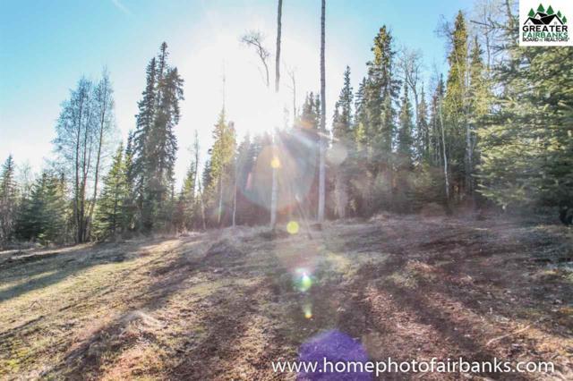 2216 Larissa Drive, Fairbanks, AK 99712 (MLS #140662) :: Powered By Lymburner Realty