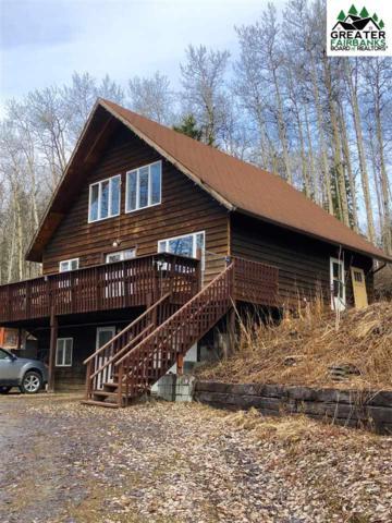 4090 Krogstie Lane, Fairbanks, AK 99709 (MLS #140663) :: Madden Real Estate