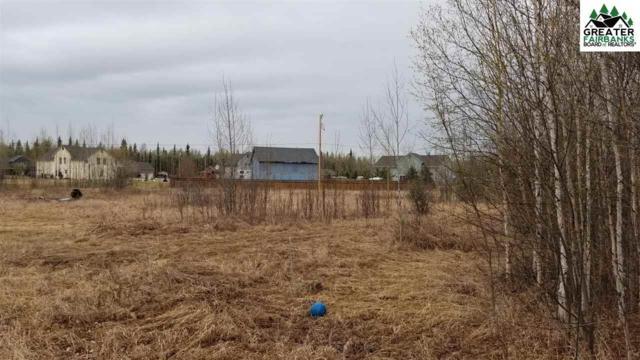 NHN Shaylee Court, North Pole, AK 99705 (MLS #140679) :: Madden Real Estate