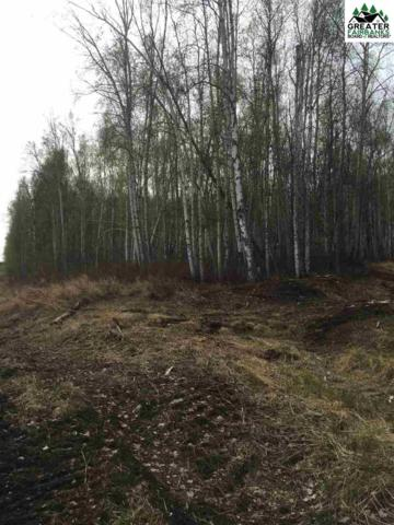 NHN Elliott Highway, Fairbanks, AK 99712 (MLS #140708) :: Madden Real Estate
