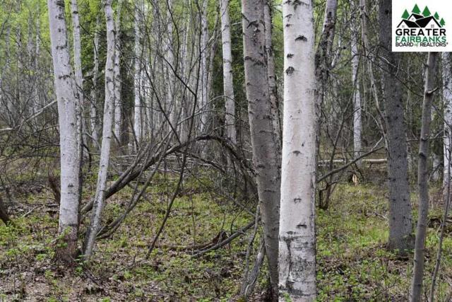 TrA Blue Fox Run, Fairbanks, AK 99712 (MLS #140712) :: RE/MAX Associates of Fairbanks