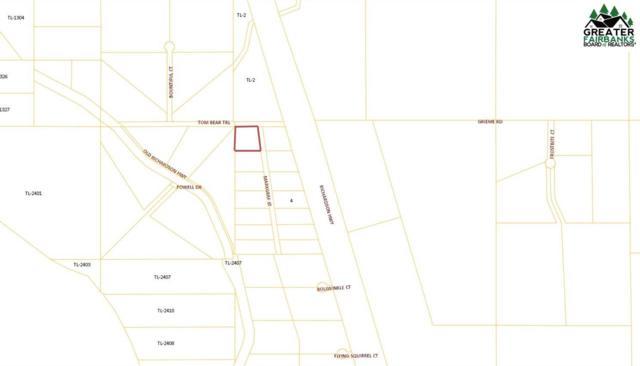 NHN Markgraf Street, Salcha, AK 99714 (MLS #140754) :: RE/MAX Associates of Fairbanks
