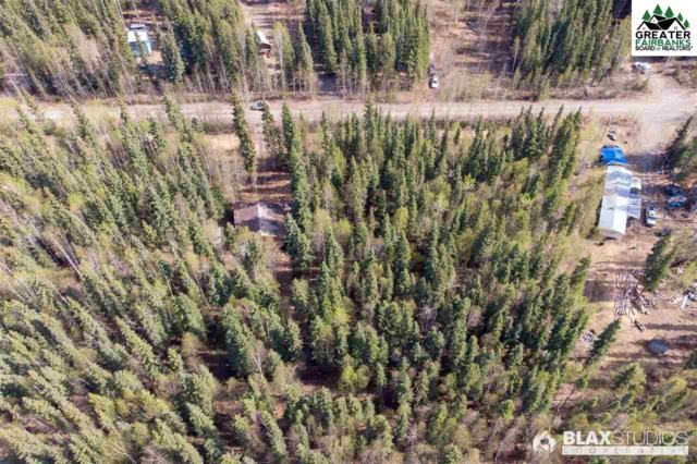 6867/6869 Markgraf Street, Salcha, AK 99714 (MLS #140757) :: Madden Real Estate