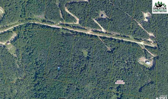 1177 Leuthold Drive, Fairbanks, AK 99712 (MLS #140773) :: Madden Real Estate