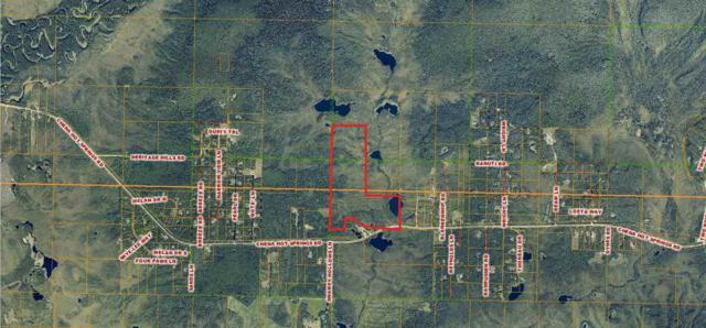 NHN Chena Hot Springs Road, Fairbanks, AK 99712 (MLS #140790) :: Madden Real Estate