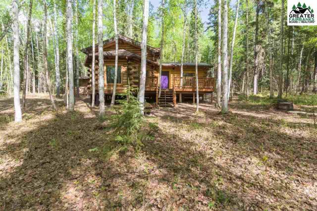 3878 Venture Lane, Fairbanks, AK 99709 (MLS #140802) :: Madden Real Estate