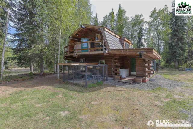 3052 Dehmer Road, North Pole, AK 99705 (MLS #140874) :: Powered By Lymburner Realty