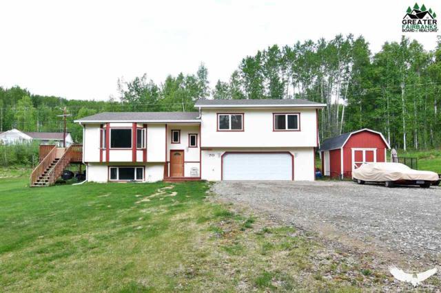 70 Teresa Turnaround/Mcgrath, Fairbanks, AK 99712 (MLS #140889) :: Madden Real Estate