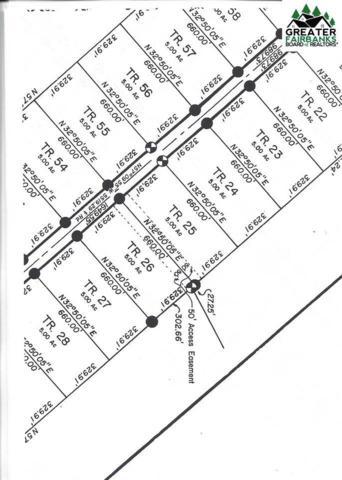 Tr 22 Barley Way, Delta Junction, AK 99737 (MLS #140890) :: Madden Real Estate