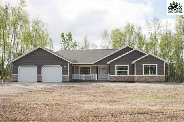 2160 Nelson Road, North Pole, AK 99705 (MLS #140949) :: Powered By Lymburner Realty