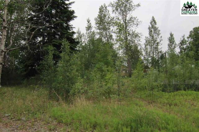 NHN Eielson Street, Fairbanks, AK 99701 (MLS #140978) :: Powered By Lymburner Realty