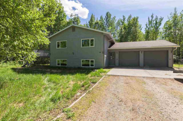 3591 Biathalon Avenue, North Pole, AK 99705 (MLS #140982) :: Madden Real Estate
