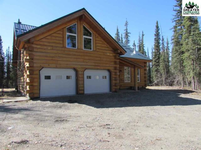 4109 Polar Fox Loop, North Pole, AK 99705 (MLS #140991) :: Madden Real Estate
