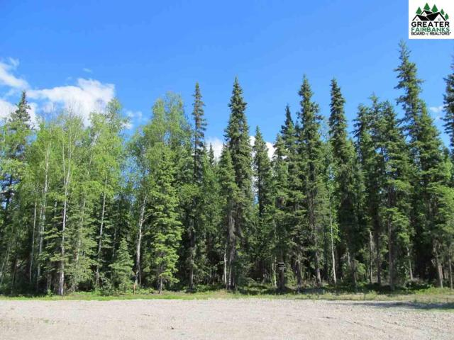 NHN Clear Water Court, North Pole, AK 99705 (MLS #141011) :: Madden Real Estate