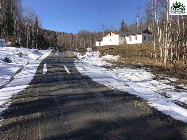 1968 Chena Point Avenue, Fairbanks, AK 99709 (MLS #141026) :: Madden Real Estate