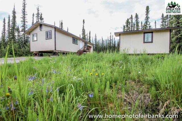 2470 Maria Street, Fairbanks, AK 99709 (MLS #141052) :: Madden Real Estate