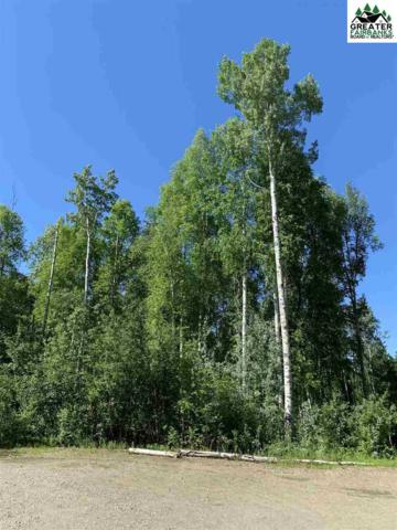 NHN Henry Hahn Court, Fairbanks, AK 99712 (MLS #141101) :: Madden Real Estate