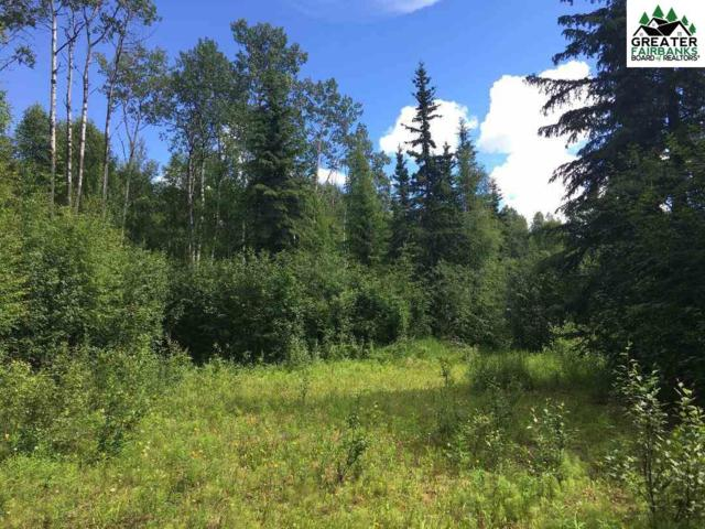 NHN Paydirt Road, Fairbanks, AK 99712 (MLS #141108) :: Madden Real Estate