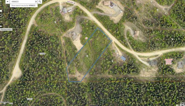 nhn Fox Den Drive, Fairbanks, AK 99709 (MLS #141125) :: Powered By Lymburner Realty