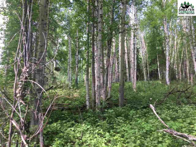 NHN Bullion Drive, Fairbanks, AK 99712 (MLS #141150) :: Madden Real Estate