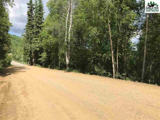 NHN Taroka Drive, Fairbanks, AK 99709 (MLS #141151) :: Madden Real Estate