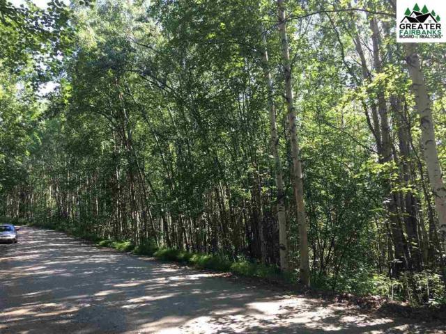 nhn Smallwood Trail, Fairbanks, AK 99709 (MLS #141177) :: Powered By Lymburner Realty