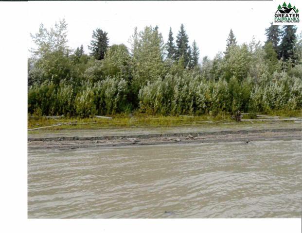 NHN Yukon River, Horner Hot Springs, AK 99756 (MLS #141184) :: Madden Real Estate