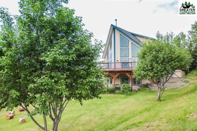 1197 Bemis Court, Fairbanks, AK 99712 (MLS #141203) :: Madden Real Estate