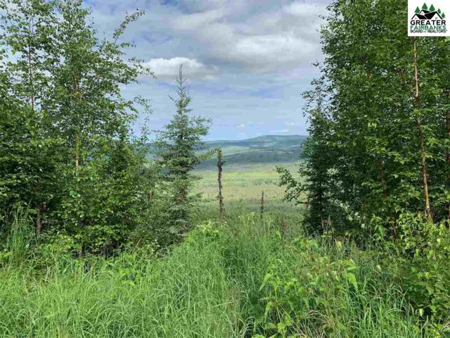 NHN Chad Street, Fairbanks, AK 99712 (MLS #141222) :: Madden Real Estate