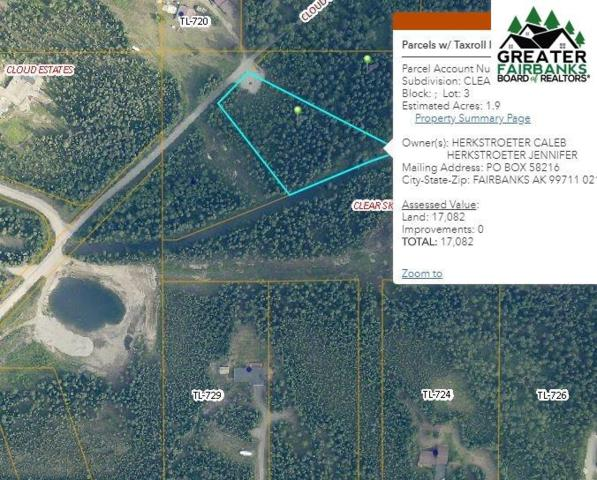NHN Cloud Road, North Pole, AK 99705 (MLS #141235) :: Madden Real Estate