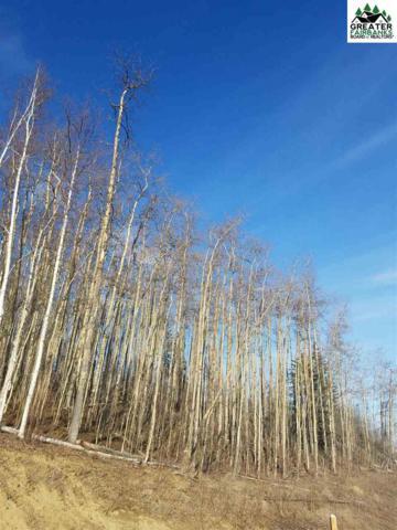 L2B2 Zuckerman Drive, Fairbanks, AK 99712 (MLS #141250) :: Madden Real Estate