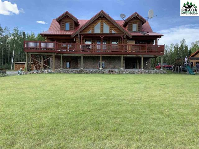 696 Mellow Glow Lane, Delta Junction, AK 99737 (MLS #141276) :: RE/MAX Associates of Fairbanks