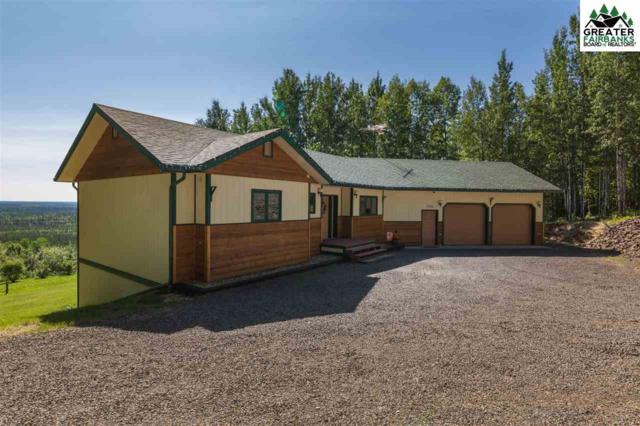 2587 Lunar Lane, Fairbanks, AK 99712 (MLS #141289) :: Madden Real Estate