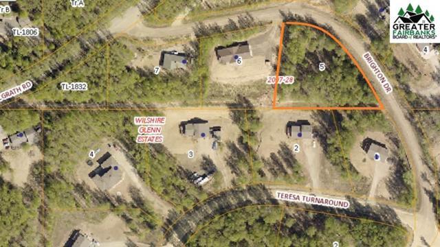 NHN Brighton Drive, Fairbanks, AK 99712 (MLS #141334) :: Madden Real Estate