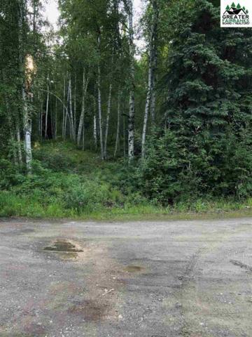 NHN Justin Drive, Fairbanks, AK 99712 (MLS #141345) :: Powered By Lymburner Realty