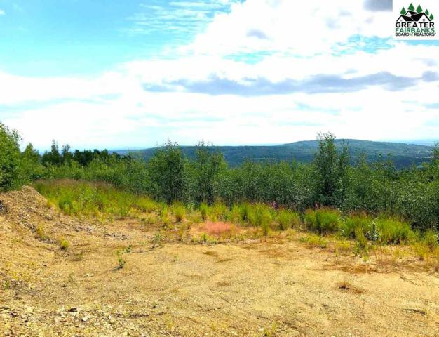 394 Taurus Road, Fairbanks, AK 99712 (MLS #141354) :: Madden Real Estate