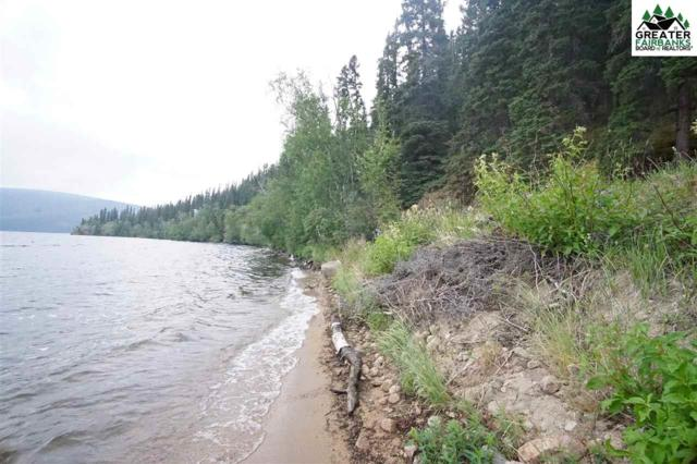 Lot 2 George Lake, Delta, AK 99737 (MLS #141373) :: Madden Real Estate