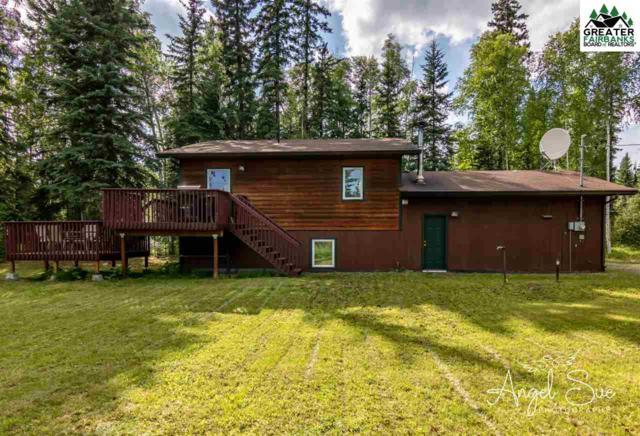 3150 Timberbrook Drive, North Pole, AK 99705 (MLS #141389) :: Madden Real Estate