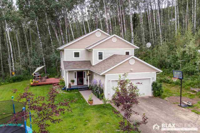 1305 Wideview Road, Fairbanks, AK 99709 (MLS #141415) :: Madden Real Estate