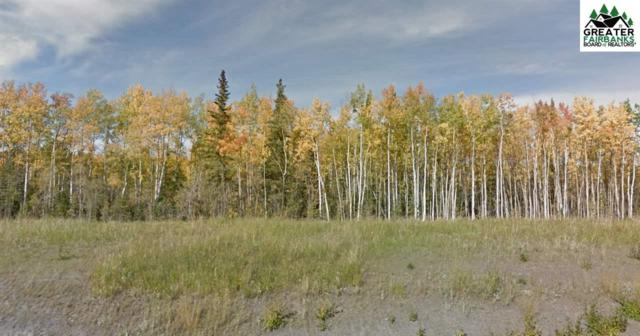 NHN George Parks Highway, Healy, AK 99743 (MLS #141423) :: Madden Real Estate