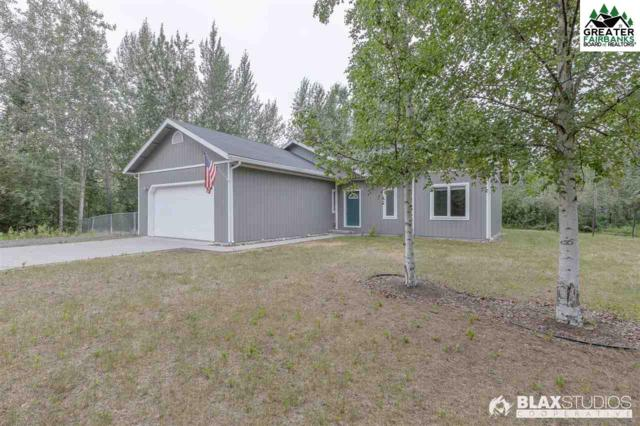 1180 Labrador Tea Court, North Pole, AK 99705 (MLS #141426) :: Madden Real Estate