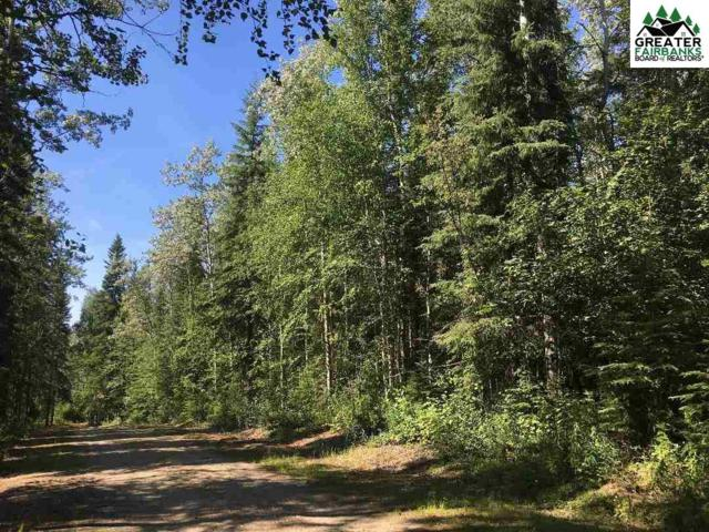 NHN Nugget Loop, Fairbanks, AK 99709 (MLS #141446) :: Powered By Lymburner Realty