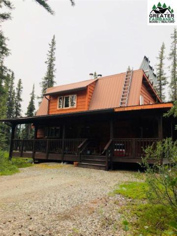 230 Parks Highway, Denali, AK 99755 (MLS #141450) :: Madden Real Estate