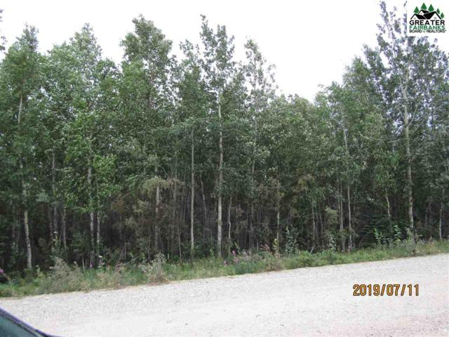 L7B Chase Road, Delta Junction, AK 99737 (MLS #141466) :: Madden Real Estate