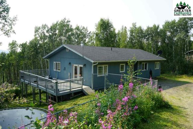 1685 Pennyweight Drive, Fairbanks, AK 99712 (MLS #141517) :: Powered By Lymburner Realty