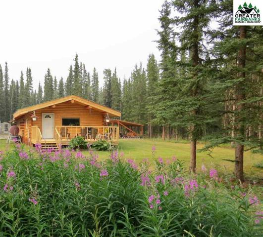000 E D Street, Tok, AK 99780 (MLS #141542) :: Madden Real Estate