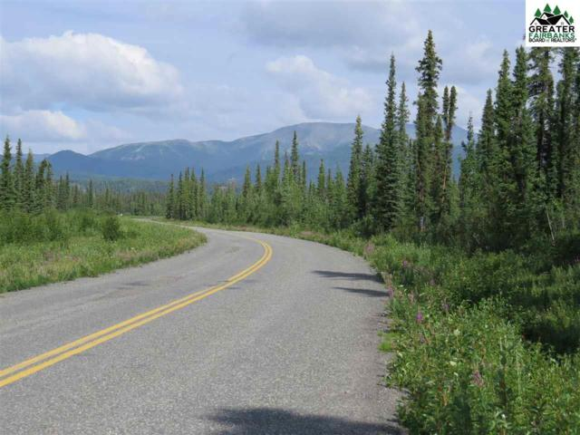 3 mile Nabesna Road, Slana, AK 99780 (MLS #141554) :: Madden Real Estate