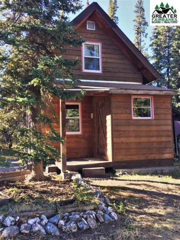 Mile 261 Parks Highway, Healy, AK 99743 (MLS #141584) :: Madden Real Estate