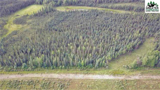 NHN Repp Road, North Pole, AK 99705 (MLS #141590) :: Madden Real Estate